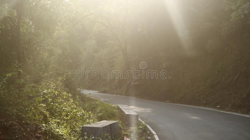 阳光摄影 免版税库存照片