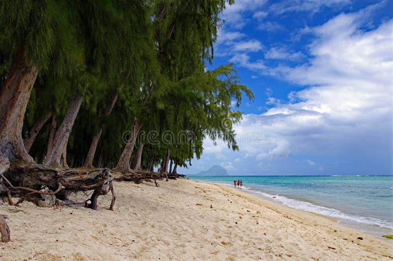 阳光明媚的一天里,人们在毛里求斯印度洋边缘的Flic en Flac公共海滩上散步,那里种着热带树 库存照片