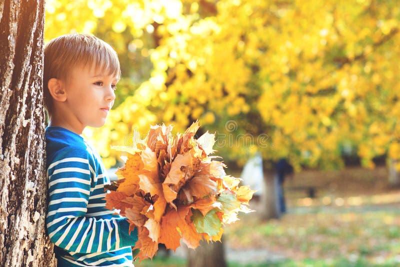 阳光明媚的日子里玩秋叶的快乐孩子 快乐健康的童年 秋节 可爱的小男孩享受秋天 免版税库存图片