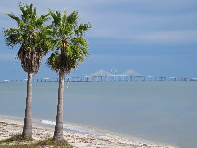 阳光横渡坦帕湾的Skyway桥梁在有棕榈树的佛罗里达,佛罗里达,美国 免版税库存照片
