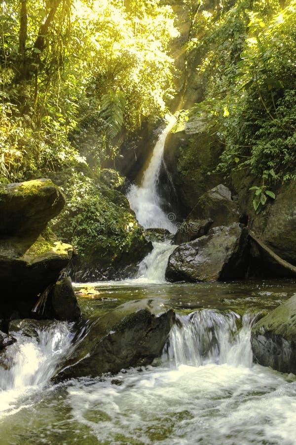 阳光沐浴的瀑布 免版税图库摄影