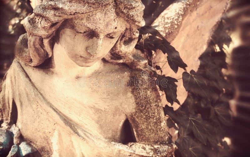 阳光照亮的金黄天使雕象庄严看法  免版税库存图片