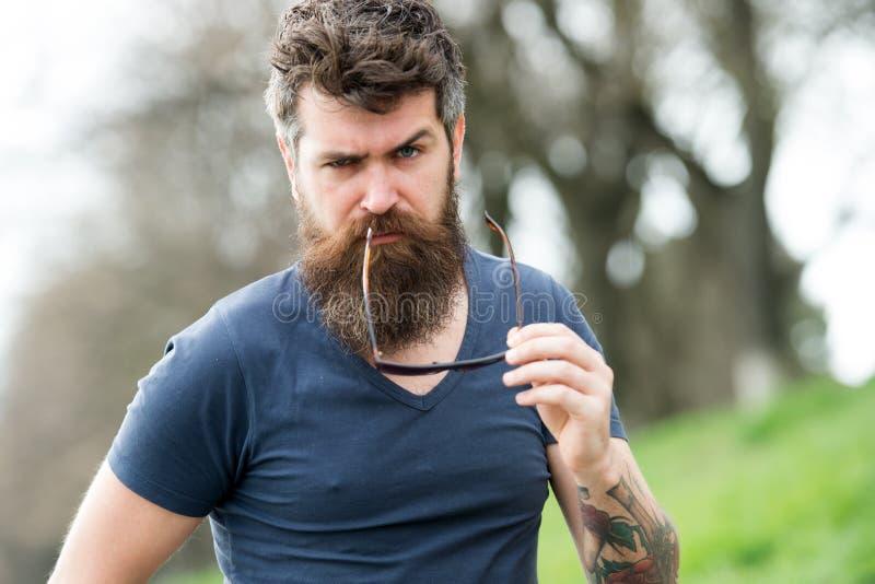 阳刚之气概念 有胡子的强壮男子和髭看起来确信的残酷举行太阳镜 有胡子的人严密的面孔 beaufort 图库摄影