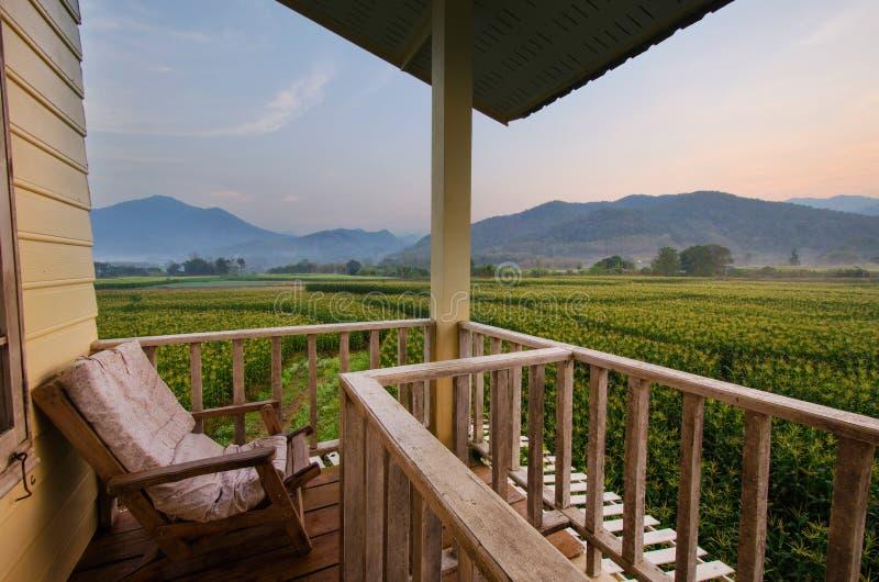 阳台与椅子和装饰的家外部在当代家,玉米田场面 库存图片