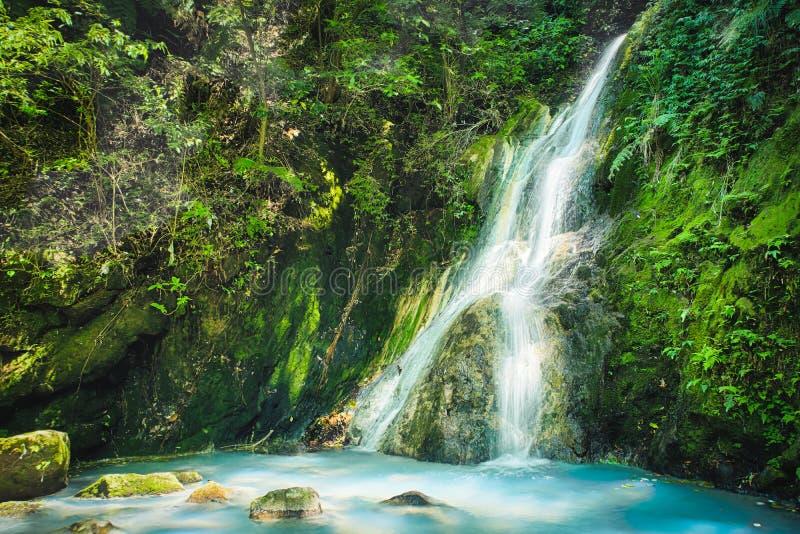 阳明山国家公园国家公园肖Yintang瀑布有乳状冷的春天和阳光的在晴天,射击在台北,台湾 图库摄影
