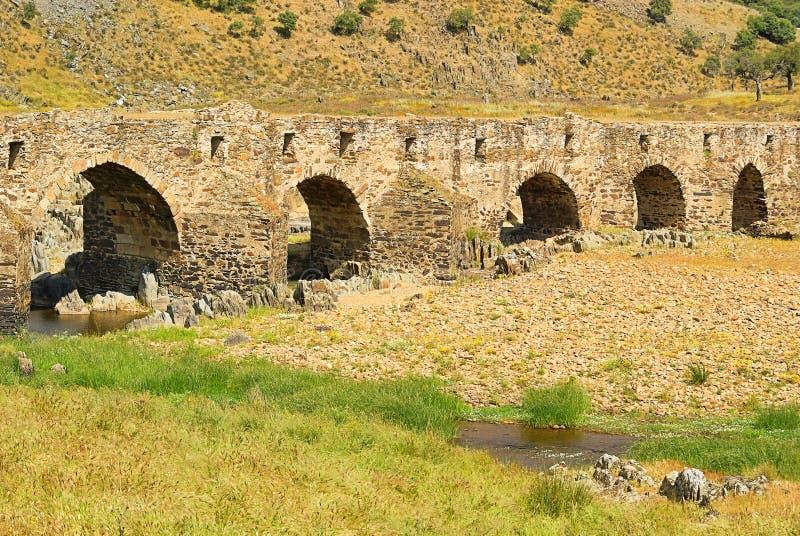 阿利塞达罗马桥梁 免版税库存照片