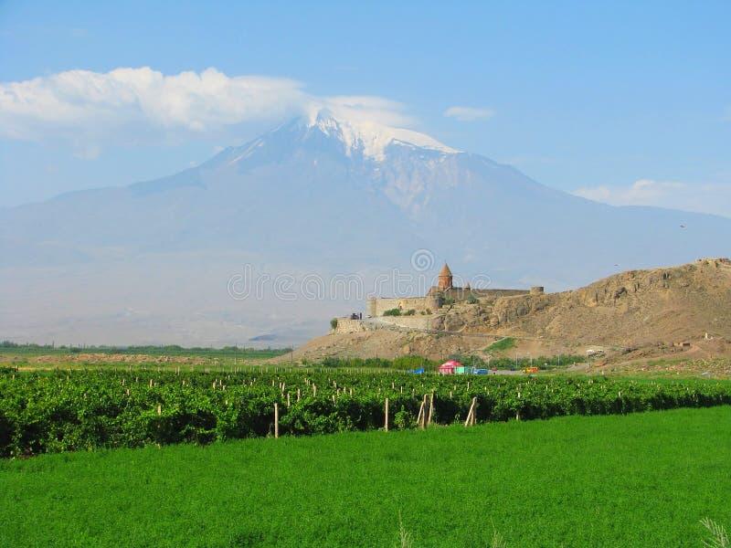 阿勒山背景khor修道院virap 库存照片