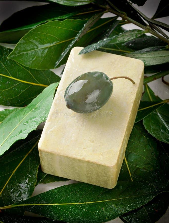 阿勒颇肥皂和月桂树 库存图片