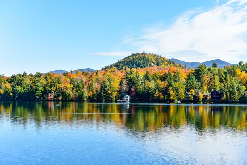 阿地伦达山脉秋叶,纽约 免版税库存图片