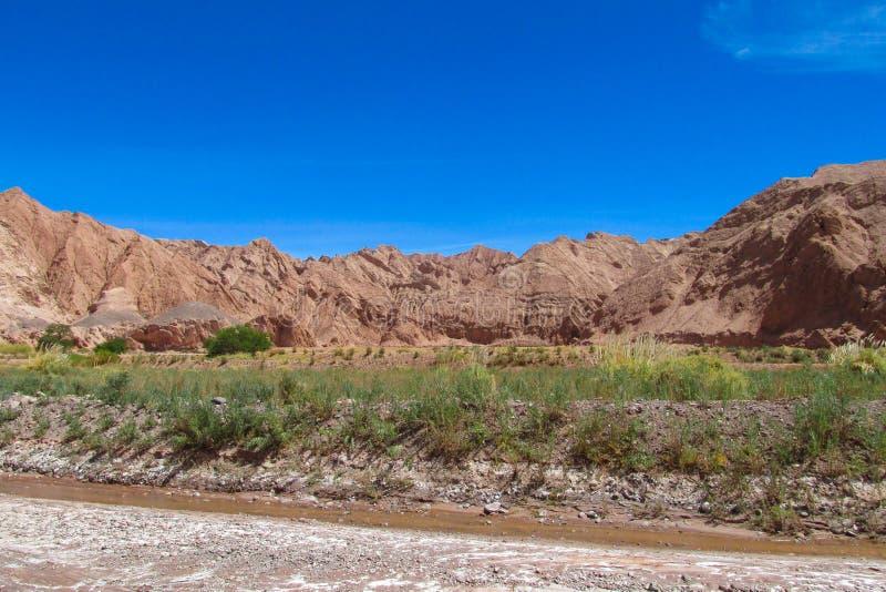 阿塔卡马沙漠干旱的山和河风景 免版税库存图片