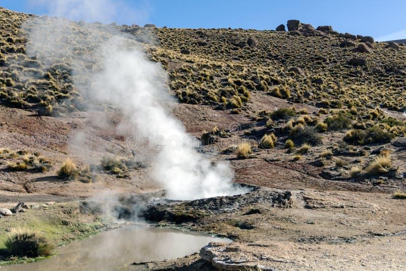 阿塔卡马沙漠,智利:在喷发蒸汽热的喷泉后的明亮的朝阳在El Tatio喷泉的调遣在清早日出 库存照片