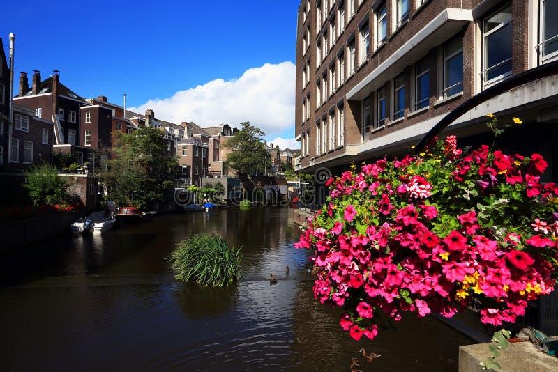 阿姆斯特丹典型的视图  免版税库存图片