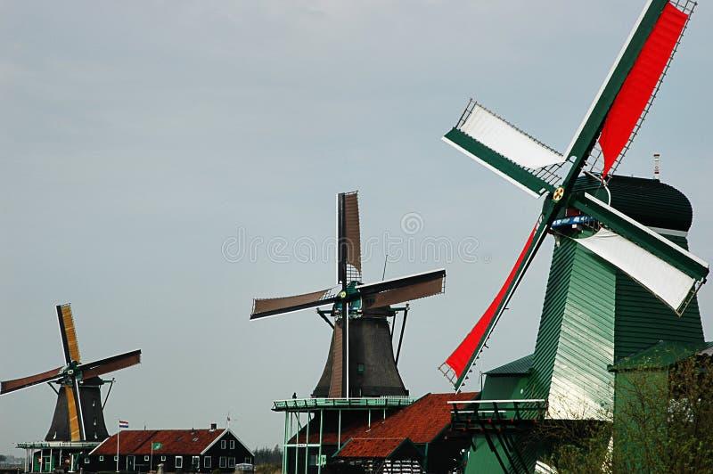 阿姆斯特丹北部schans位于了风车zaanse 库存照片