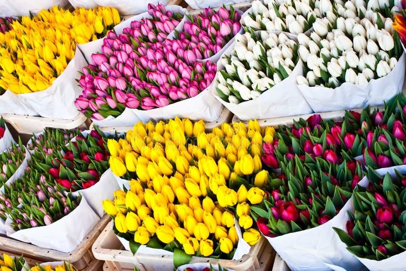 阿姆斯特丹开花市场 库存照片
