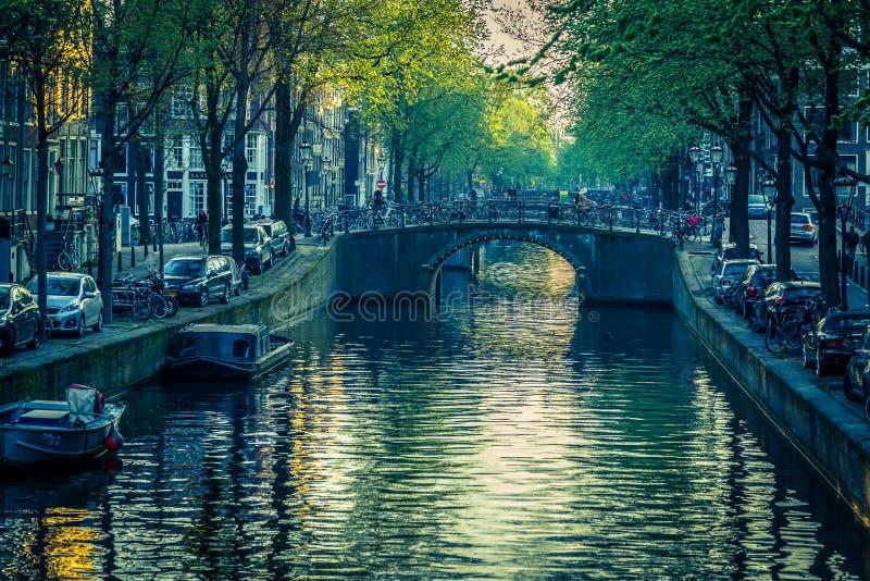 阿姆斯特丹强大丰富的运河  库存图片