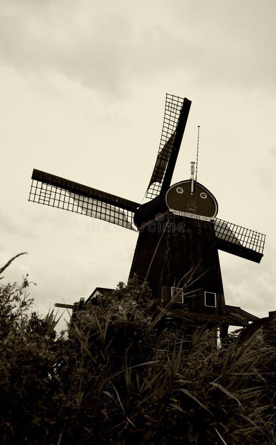 阿姆斯特丹风车 免版税图库摄影