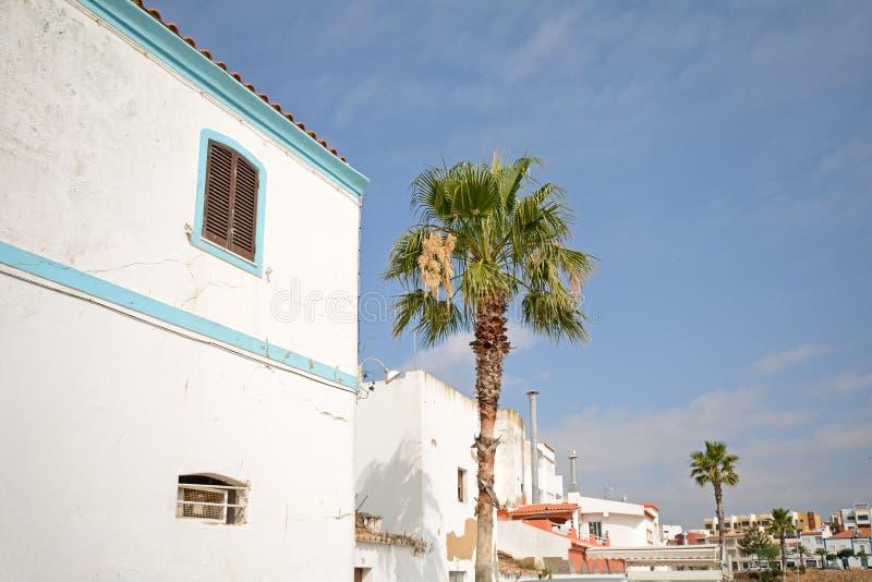 阿尔加威:传统房子和棕榈在Ferragudo渔村在波尔蒂芒附近的,葡萄牙 免版税图库摄影