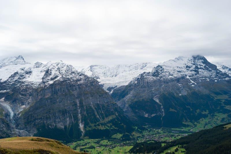 阿尔卑斯在夏天环境美化 库存图片