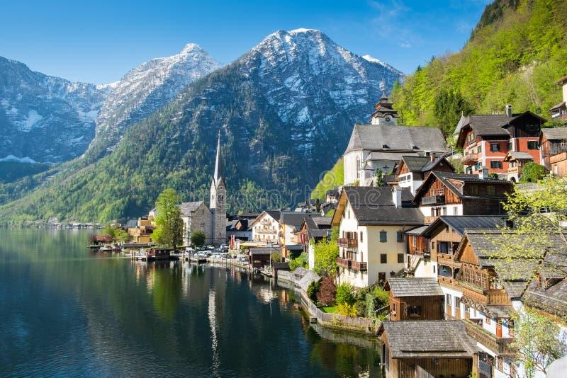 阿尔卑斯在美好的金黄早晨在秋天,萨尔茨卡默古特,奥地利的区域点燃 免版税库存照片