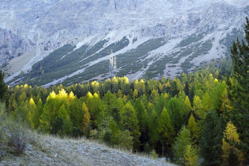 阿尔卑斯山脉电力线 免版税库存照片