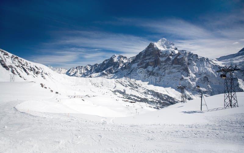 阿尔卑斯手段滑雪瑞士 免版税库存图片