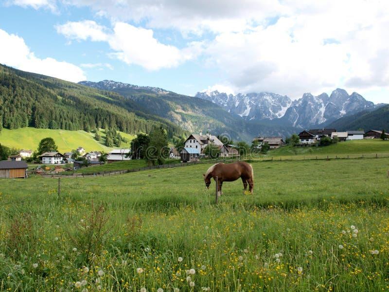 阿尔卑斯村庄 库存照片