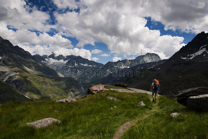 阿尔卑斯沃利斯 库存照片