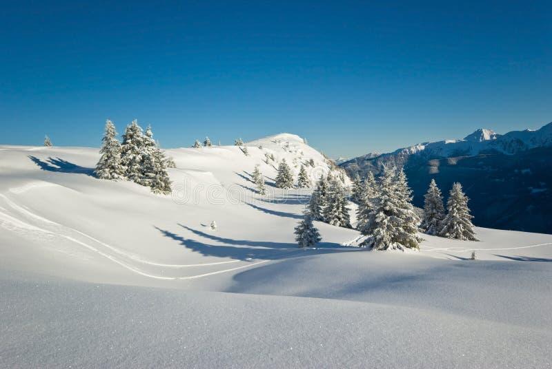 阿尔卑斯法语冬天 图库摄影