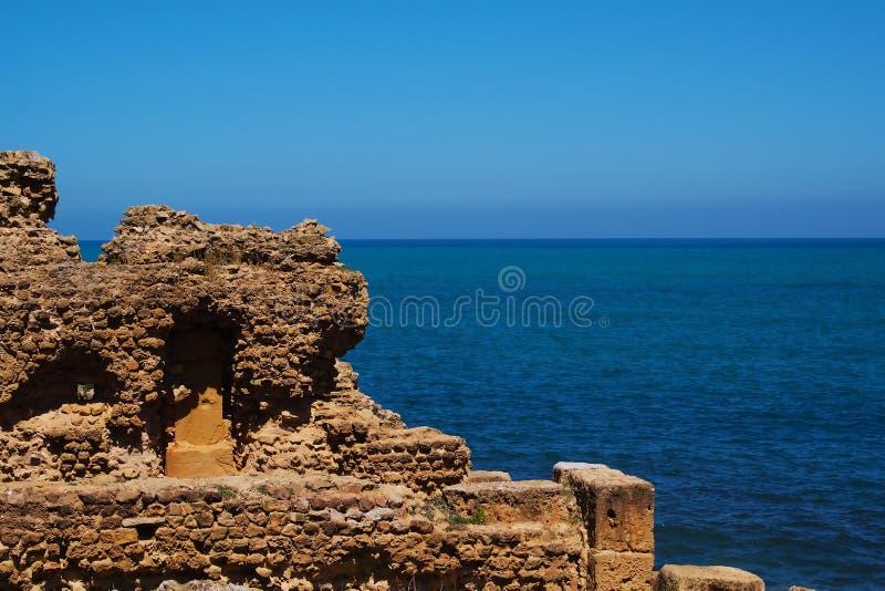 阿尔及利亚废墟海运tipasa 免版税库存照片