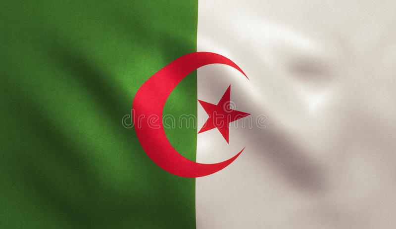 阿尔及利亚旗子 向量例证