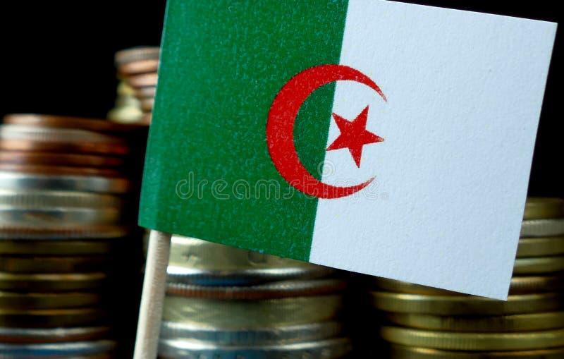 阿尔及利亚沙文主义情绪与堆金钱硬币 库存图片