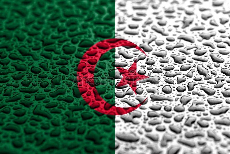 阿尔及利亚的国旗做了水下落 背景展望概念 皇族释放例证