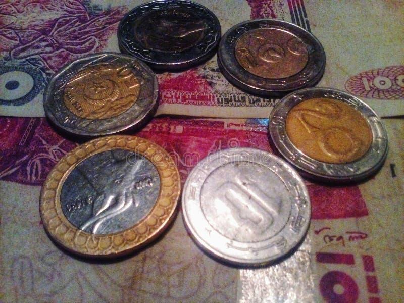 阿尔及利亚的金钱 免版税图库摄影