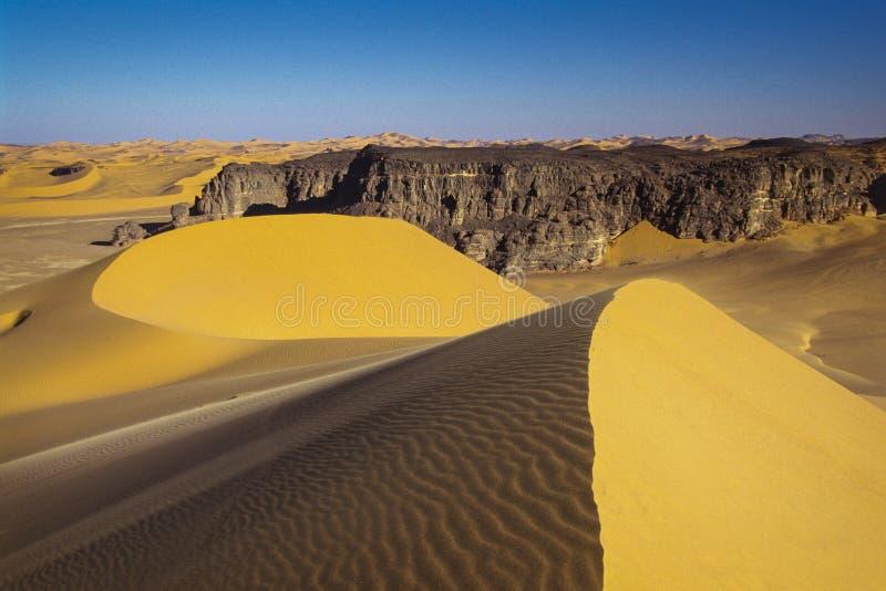 阿尔及利亚,塔希里N'Ajjer国立公园-非洲 免版税库存照片