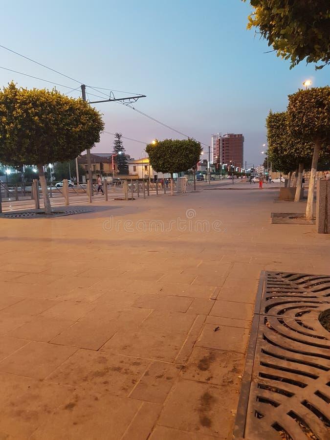 阿尔及利亚 免版税库存图片