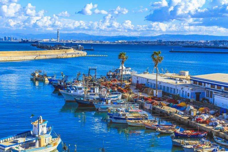 阿尔及尔看法阿尔及利亚的首都 免版税库存图片
