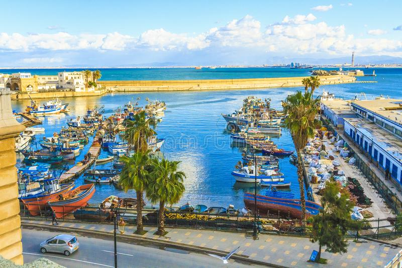 阿尔及尔看法阿尔及利亚的首都 图库摄影