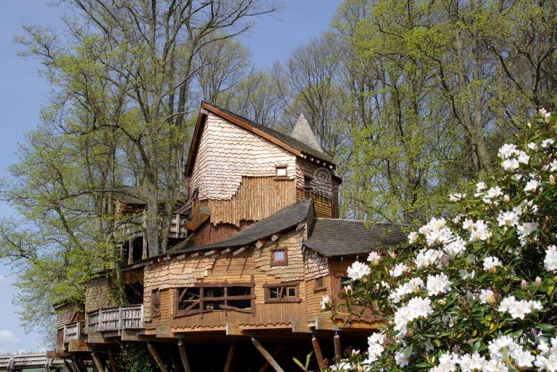 阿尔尼克庭院房子结构树 图库摄影