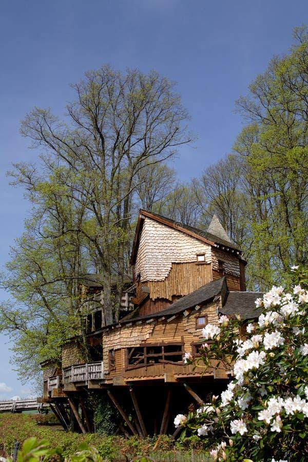 阿尔尼克庭院房子结构树 免版税库存照片