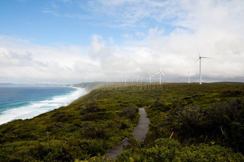 阿尔巴尼风力场 库存照片