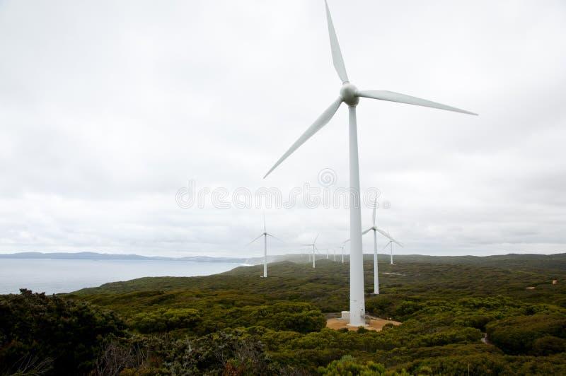 阿尔巴尼风轮机 免版税图库摄影
