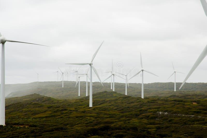 阿尔巴尼风轮机 免版税库存照片