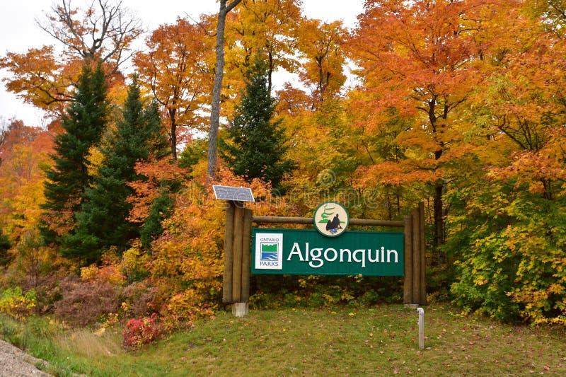 阿尔根金族在秋天的公园入口 库存照片