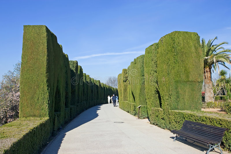 阿尔汉布拉从事园艺格拉纳达宫殿 免版税库存图片