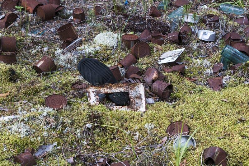 阿尔汉格尔斯克地区的森林和森林寒带草原区域的环境污染由于人的经济活动的 Catastr 免版税库存图片