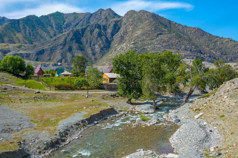 国�y���an_同一个名字的河的合流的maly yaloman村庄在katun河,阿尔泰共和国