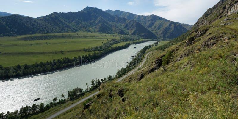 阿尔泰山, Katun河 库存图片