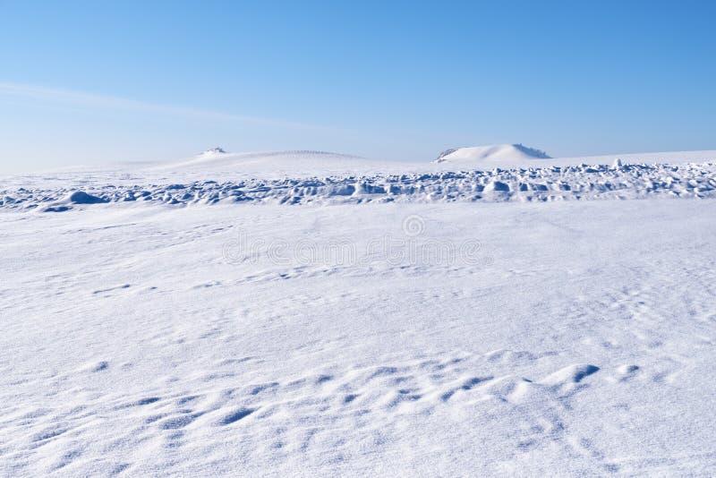 阿尔泰抱怨与雪原的冬天风景在蓝天下 免版税库存照片