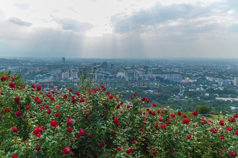 阿尔玛蒂从Koktobe小山的市视图 库存照片