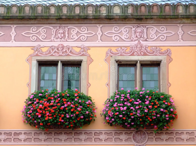 阿尔萨斯开花了obernai townhall视窗 库存照片